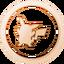PikachuFan Bronze