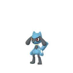 Riolu | Pokémon GO Wiki | FANDOM powered by Wikia