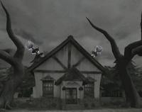 Kaminko House