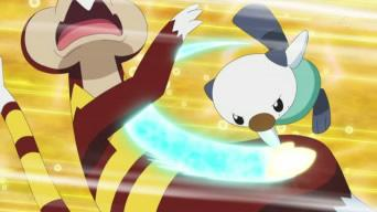 File:Oshawott vs Watchog (2).jpg