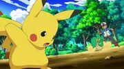 Pikachu Vs Snivy