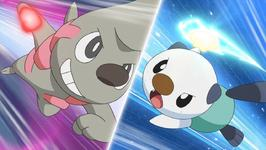 File:Oshawott Vs Timburr.jpg