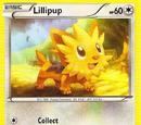 Lillipup