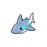 SharkoFrontShiny