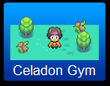 Celadon Gym Challenge Level