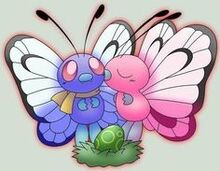 Butterfree banner