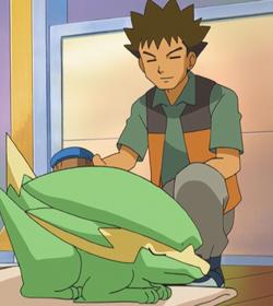 Brock grooming Electrike