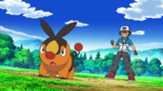 Ash and Tepig