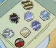 Ash Johto Badges