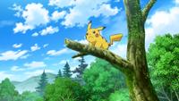 EP875 Clemont Pikachu