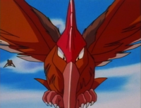 Recurring Fearow anime