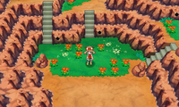 Secret Meadow ORAS