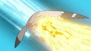 Ash Pikachu Volt Tackle
