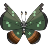 Vivillon-Jungle