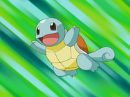 Squirtle May