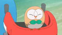 Ash Rowlet personality
