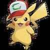 Pikachu-Partner