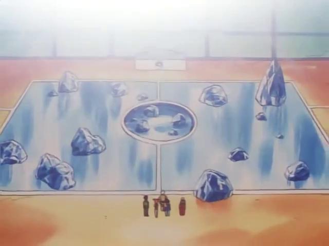 Mahogany Gym Battlefield