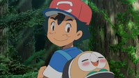 Ash and Rowlet