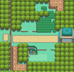Kanto Route 7 HGSS