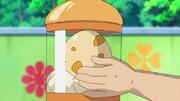 Ash Egg BW012