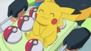 Pokémon Center heal