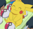 Centrum Pokémonów