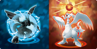 Reshiram Zekrom Fusion Flare Bolt artwork