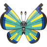 Vivillon-Savanna