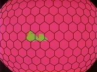 Venonat Radar Eye