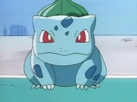 Ash Misty Bulbasaur