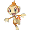 Chimchar