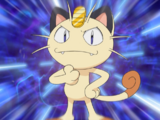 Meowth (Zespół R)