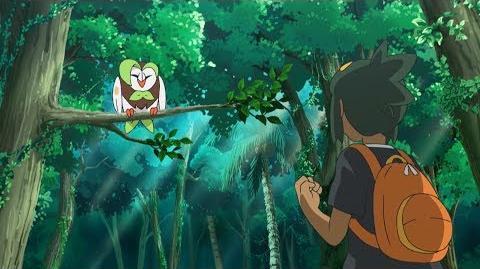 Pokémon the Series Sun & Moon—Ultra Legends Trailer