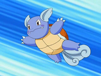 EP546 May Wartortle