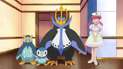Piplup family anime