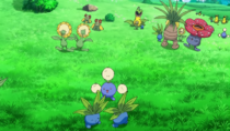 Ramos ranch Pokemon