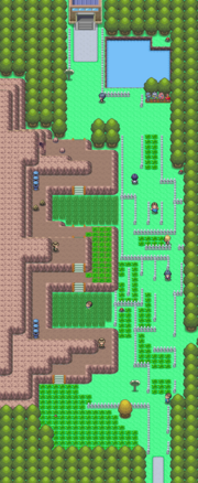 Sinnoh Route 214 DP