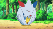 EP660 Togekiss motherly