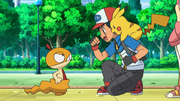 Ash and Scraggy