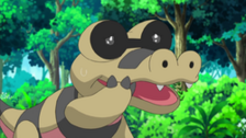 Sunglasses Sandile crying