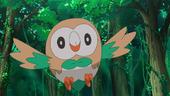 Rowlet de Ash no anime Sun e Moon