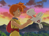 Misty and Togetic