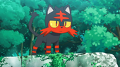 Litten de Ash no anime Sun e Moon