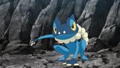 Frogadier de Ash no anime XY