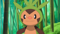 Chespin de Clemont
