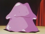 EP037 Ditto