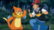 Buizel con Ash