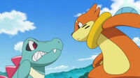 Confrontation-With-Buizel-totodile-22695170-342-192