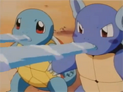 Wartortle y Squirtle